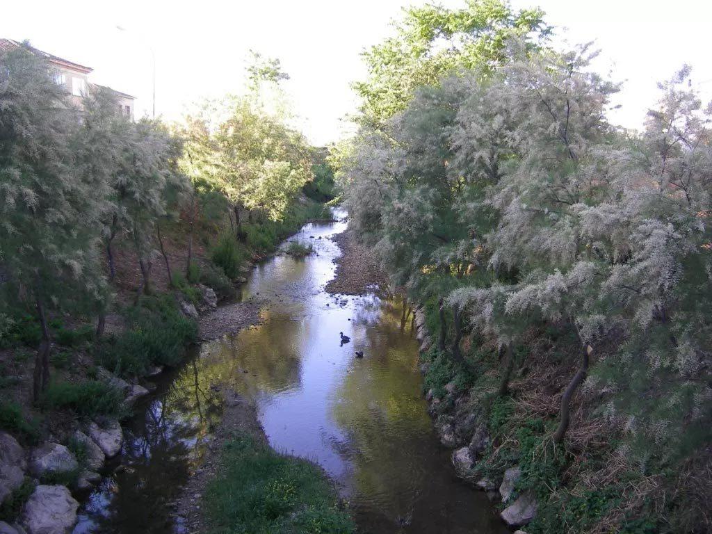 Río Odrón. Afluente del Ebro.