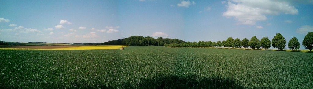 Panorámica de campos