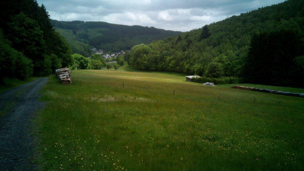 El camino y la pradera