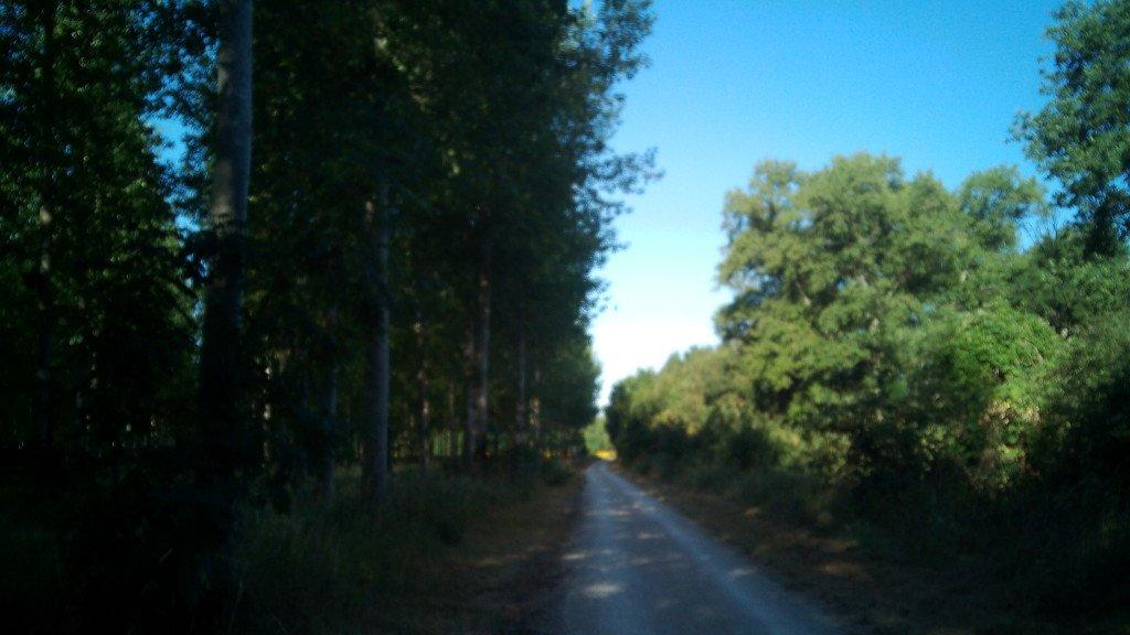 Un trozo del camino