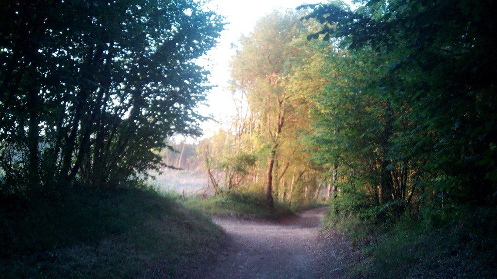 El camino realmente bonito
