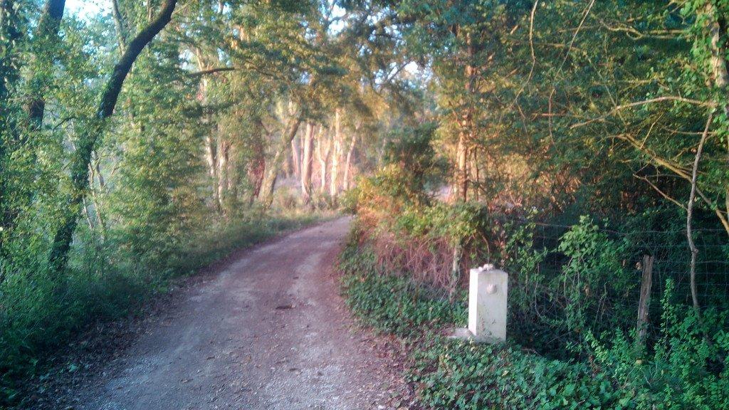 El camino con hito jacobeo