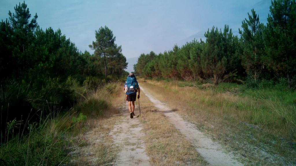 Salvador abriendo camino