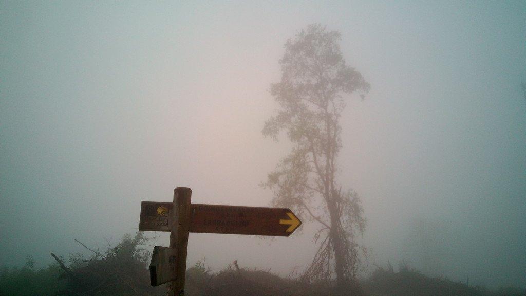 Una señal en la niebla