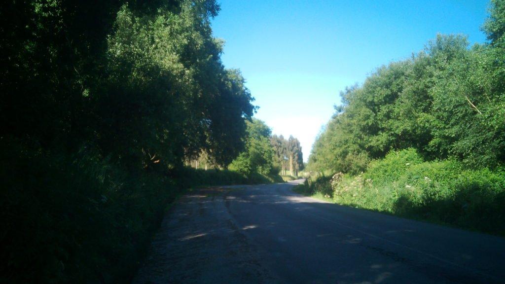 En el Camino Primitivo