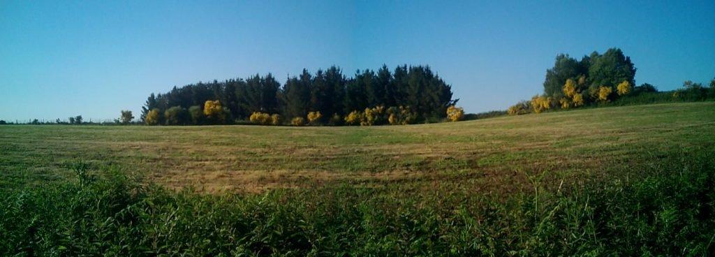 Panorámica del paisaje
