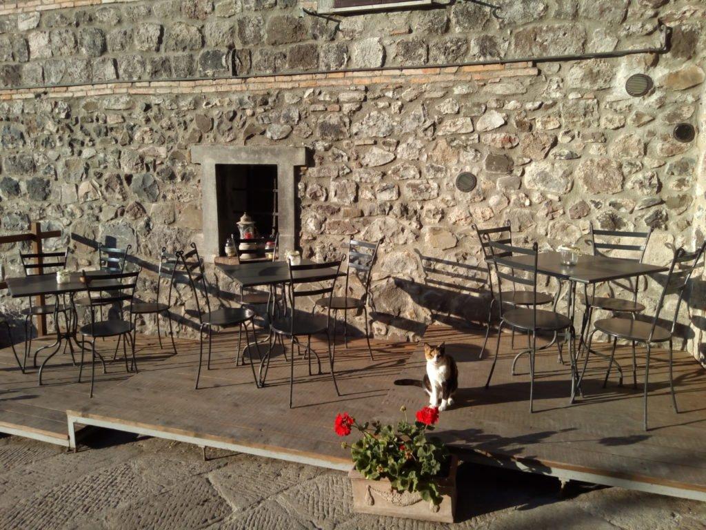 Terracita de bar, con gato, a la salida de Radicofani