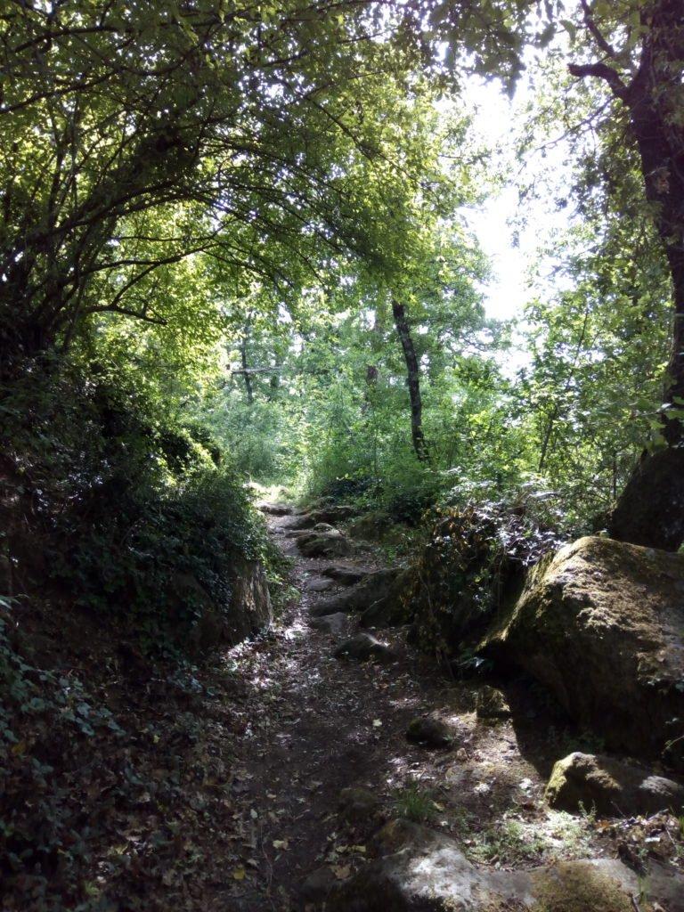 El camino bordeando el lago de Bolsena