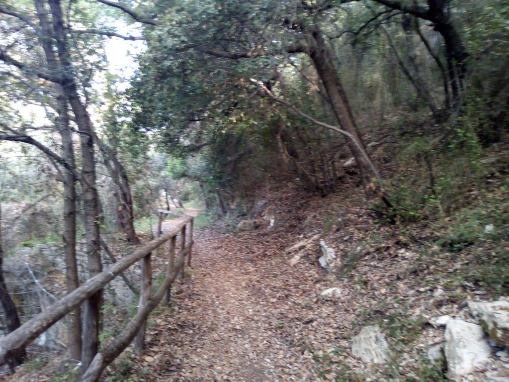 Hasta llegar a las ruinas de Santa Ana hay una fuerte subida