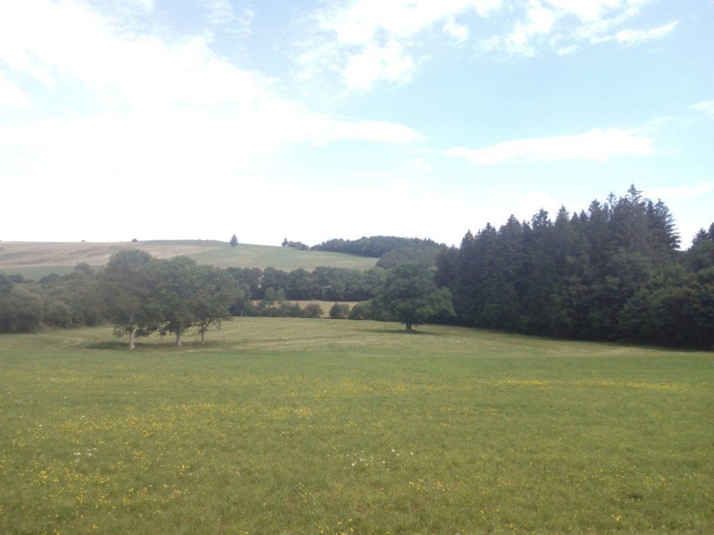 El de hoy un camino de variados paisajes