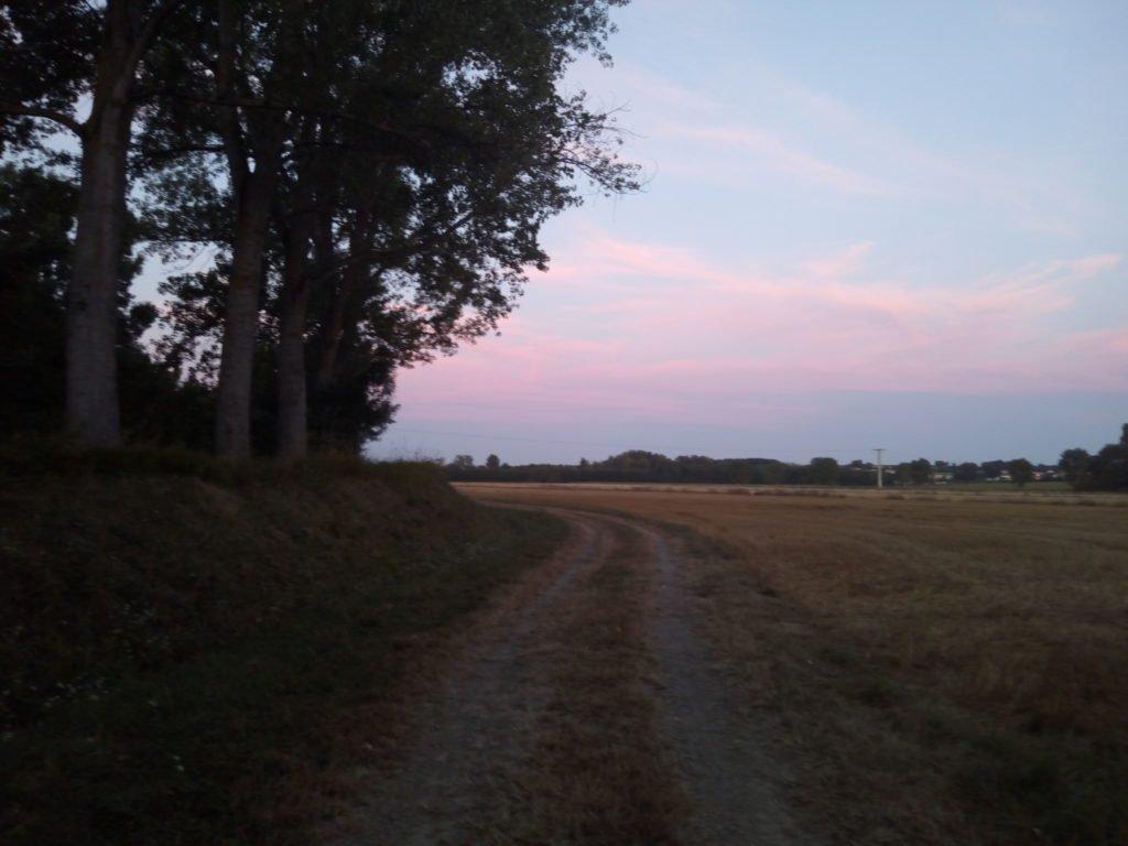 Bonito día, camino agradable