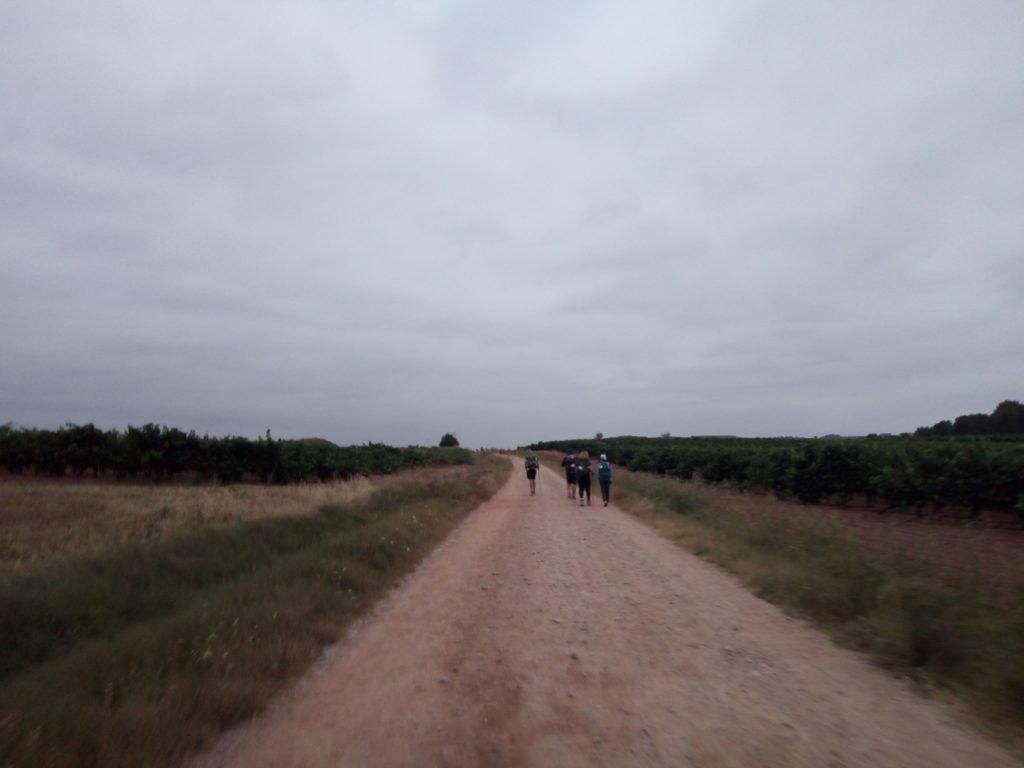 Adelantando peregrinos