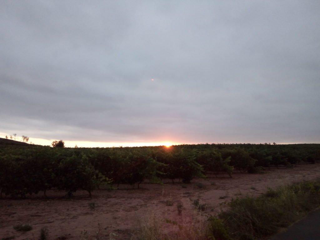 Por allí amanece, por allí está el Este