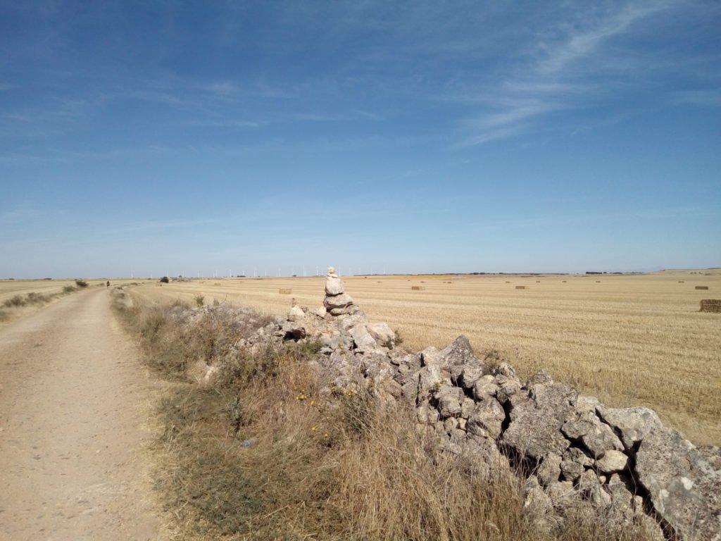 El camino. Un secarral en agosto