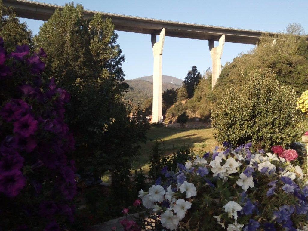 Flores y autovía